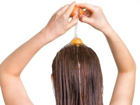 Manfaat Telur Rambut